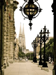 Vienna. I believe that's the Votivkirche in the background. Places Around The World, Oh The Places You'll Go, Travel Around The World, Places To Travel, Places To Visit, Around The Worlds, Wonderful Places, Beautiful Places, You're Beautiful