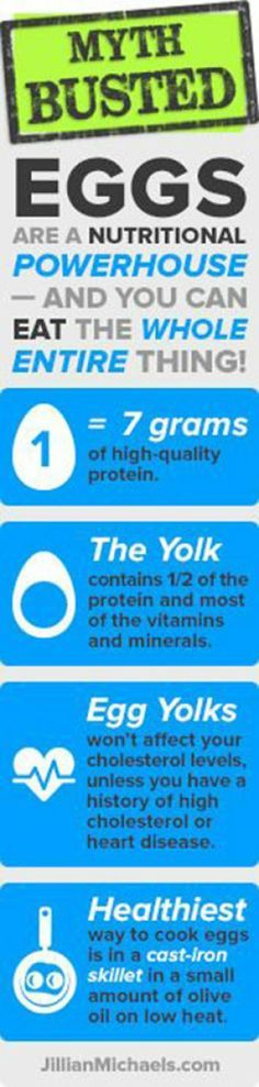 Battle of the Eggs – Which Egg Type Is Best For You?