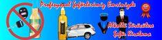 Chauffeur Services: İzmir Kiralık Şoför