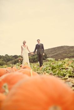 pumpkin patch photos. love the focus on this one.