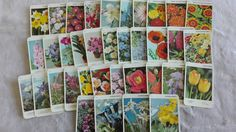 Flowers Quartet playing cards game, vintage rummy game, 1990s , Craft Supplies Scrapbooking by MetalmanEd on Etsy