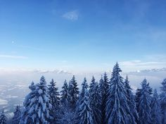 Winter Wonderland in Austria Winter Wonderland, Austria, 21st, Wanderlust, Mountains, Nature, Instagram Posts, Travel, Naturaleza