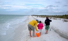 Walking the surf, collecting shells on Marco Island