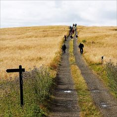 On the Videy island near Reykjavik there are almost no cars. Travellers must either walk or bike. From Videy festival