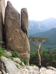 Ulsanbawi Rock: Seoraksan National Park, Sokcho, Korea