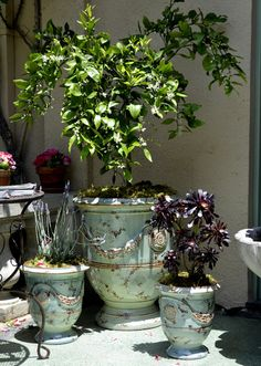 French antiqued planters