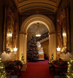'A Very Happy Holiday Season To All---And To All A Happy New Year!' JT (always in my own words)--------------elegantspell:  Christmas at Osborne House.