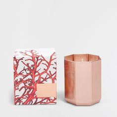 Zara Home Scented Candle Zara Home Candles, Candle Bags, Home Scents, Red Berries, Scented Candles, Packaging Design, Candle Holders, Fragrance, Design Inspiration