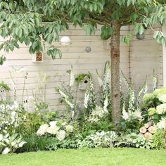 Un jardin de fleurs blanches In this garden in England, white flowers set the tone and everything is done to welcome the birds. Moon Garden, Dream Garden, Garden Art, White Garden Fence, Black Fence, White Fence, Back Gardens, Small Gardens, Backyard Fences