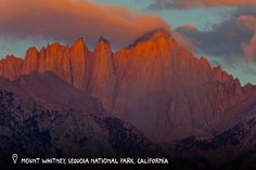 Mount Whitney  Sequoia National Park is also home to Mount Whitney, the tallest mountain in the lower 48 states, measuring in at 14, 494 feet.