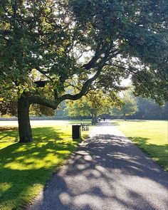 """The last days of summer 😎  #battersea #batterseapark #park #parklife #trees #green #sunshine #londonlife #london #citygirl #city #travelphotography #travelgram #travel #wanderlust #summersover"" by @ldnchelsea. #fslc #followshoutoutlikecomment #TagsForLikesFSLC #TagsForLikesApp #follow #shoutout #followme #comment #TagsForLikes #f4f #s4s #l4l #c4c #followback #shoutoutback #likeback #commentback #love #instagood #photooftheday #pleasefollow #pleaseshoutout #pleaselike #pleasecomment…"