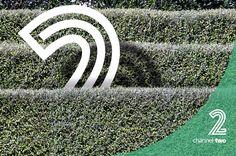 Botanical Bundle v2 by envirographic on @creativemarket