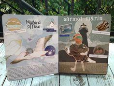 Les Emplumés - drôles d'oiseaux des Îles de la Madeleine http://lesptitsmotsdits.com/iles-de-la-madeleine-les-emplumes/