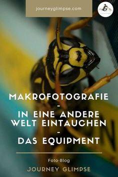 Die Makro-Fotografie ist faszinierend. Sie lässt uns tief in eine andere Welt eintauchen. In diesem Foto-Blog geben wir Tipps zum Equipment.