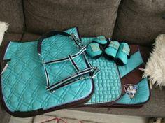 Mint blauwe paarden set