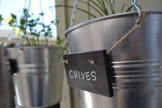 paper{whites}: welcome to our DIY herb garden.