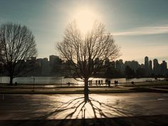 Walk in the park Art Google, Google Images, Vancouver Bc Canada, Most Beautiful Cities, Paradise, Scenery, The Incredibles, Sky, Mountains