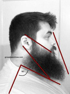 How to trip a beard - follow these guide lines.