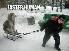 Haha..I can see Max doing this!!!