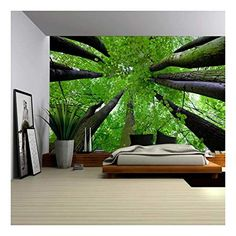 - Gazing Up Into a Leafy Covered Forest - Wall Mural, Removable Sticker, Home Decor - inches *The wall mural is cut into 4 pieces for easy installation, each in size is (Height x Width) *All wall murals have a durable Wall Stickers Murals, Wall Murals, Poltrona Design, Forest Mural, Outdoor Walls, Outdoor Decor, Pavilion Design, Bedroom Murals, Interior Decorating
