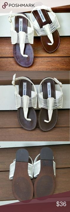 """""""Stiltz"""" by Steve Madden Gladiator style,  sling back sandals. Brown and white with silver piping detail.   Never worn,  NWOT. Steve Madden Shoes Sandals"""