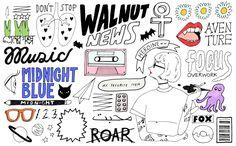 WALNUT illustrations