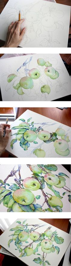 Watercolor branch with apples. The template for the pattern surface textile, packaging or scrapbooking.