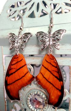 186aa168c Authentic Daggerwing Butterfly Wing Earring by OrganicoJewelry, $17.00