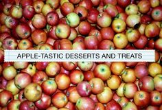 Apple-Tastic Dessert (and Treats) Recipes #cavewifecooks #paleo #paleofriendly #glutenfree #grainfree #soyfree #apples #applerecipes #dessert
