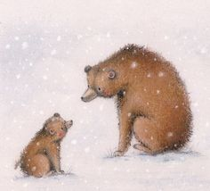 alice wong - bear illustration