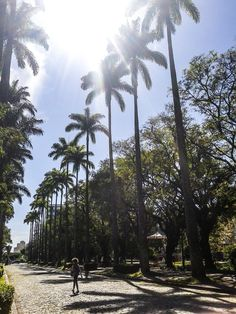 Praça da Liberdade em Belo Horizonte, MG
