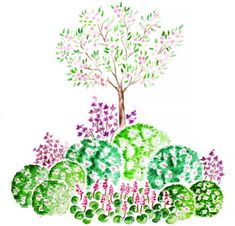 Garden Landscape Design, Garden Landscaping, Garden Tips, Plants, Vegetables Garden, Watercolor Painting, Front Yard Landscaping, Plant, Planets