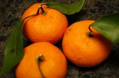 Louisiana satsumas....have these planted in the back yard...just unbelievably delicious !!!