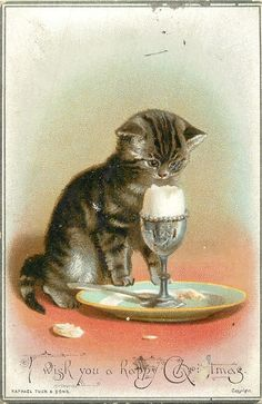 brown striped cat with opened egg in an eggcup on a plate-Christmas Card