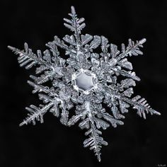 Snowflake: Equal Balance Amazingly Beautiful! My finite mind has a hard time wrapping around the fact that every snowflake is unique! Proof of intelligent design! Thankyou God!❤️☺️el