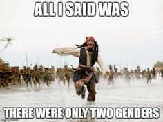 Jack Sparrow Being Chased | ALL I SAID WAS THERE WERE ONLY TWO GENDERS | image tagged in memes,jack sparrow being chased | made w/ Imgflip meme maker
