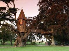 Maison insolite - Une tour dans les arbres