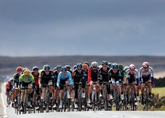 2015 tour de yorkshire stage 3 Team Sky leads the peloton during Stage 3 (photo © Alex Whitehead)