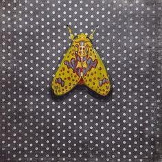 Amaxia Pulchra Tiger Moth or Bella Polilla Amarilla (Beautiful Yellow Moth) 6x6 acrylics on patterned paper. #30daychallenge #acrylics #artseries #artonpaper #dailypainting #moth #yellowmoth #tigermoth #insect #danaaldisstudio #daspinterest