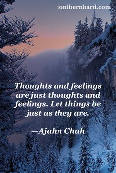 """""""Thoughts and feelings are just thoughts and feelings. Let things be just as they are."""" —The Thai forest monk Ajahn Chah"""