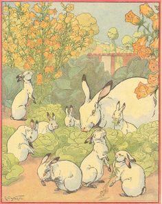 Roaming Rabbits