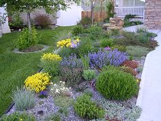 Perennial border so much more interesting than lawn. Low Water Landscaping, Landscaping Tips, Front Yard Landscaping, Beautiful Flowers Garden, Beautiful Gardens, Xeriscape Plants, Garden Styles, Garden Planning, Outdoor Gardens