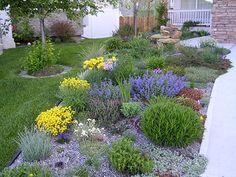 Perennial border so much more interesting than lawn.
