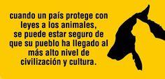 Animales...lastima que es lo contrario, faltan leyes mas duras para protegerlos