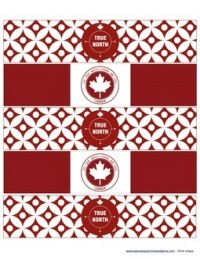 Polkadot Prints Canada Day Party dot Printable