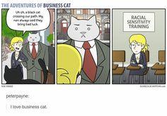 Business cat's racial sensitivity training
