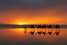 Essaoiurra. Beach Camelride.
