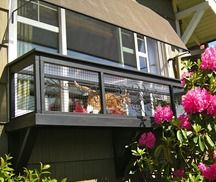 We build safe and visually appealing cat enclosures in the greater Seattle area for a healthy and happy cat. Guaranteed to create a positive