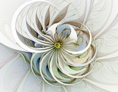 Swirling Petals / Fractal art