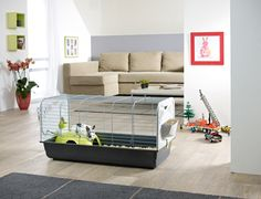 Discover our Caesar 3 de luxe rabbit cage. Look how well it will in your interior.